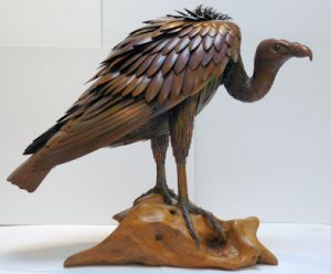 Griffin Vulture by Sue White Oakes