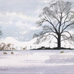 One Snowy Morning by Alison Proudlock