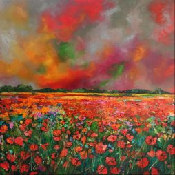 Poppy Glory by Julie Dumbarton