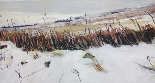 Snow In the Pentlands II by Catriona Taylor