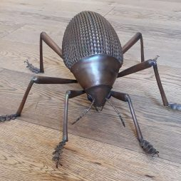 Tok Tokkis Beetle by Sue White Oakes