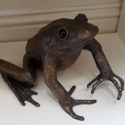 Frog by Sue White Oakes