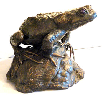 Common Toad by Sue White Oakes