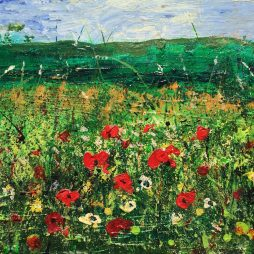 Wild Poppies by Neil Pettie