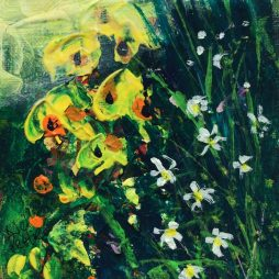 Yellow & Whites by Neil Pettie