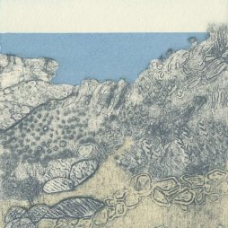Scrubby landscape, Mallorca by Gillian Murray