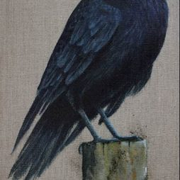 Carrion Crow by Helen Welsh