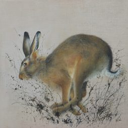 Hare by Helen Welsh