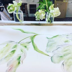 White Parrot Tulips by Clare Robinson