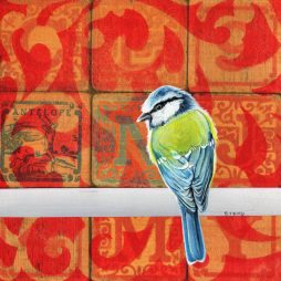 B is for Bluetit by Stanley Bird