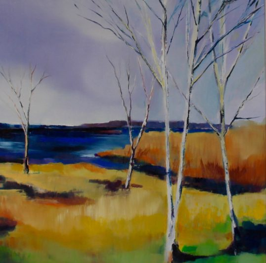 Birch Ress, Clatteringshaws by Sarah Anderson