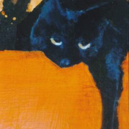 Cat by Linnette Kelly