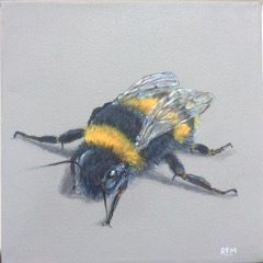 Bumble Bee by Rosemary Mark