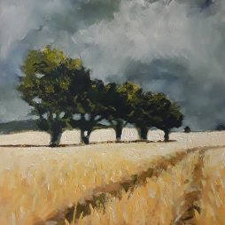 The Buzzard Field. Early Morning Stobo by David Holmes