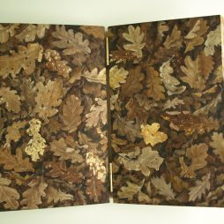 Oak Leaf Diptych by Anne Gilchrist