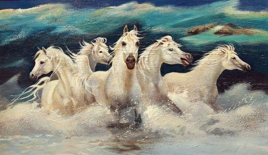 White Horses of the Camargue by Margaret Donald