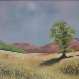 The Hills above Stobo by David Holmes