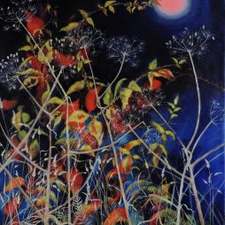 Bramble Moon by Sheila Anderson-Hardy