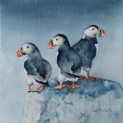 Puffin Weather Watchers by Jan McBeth