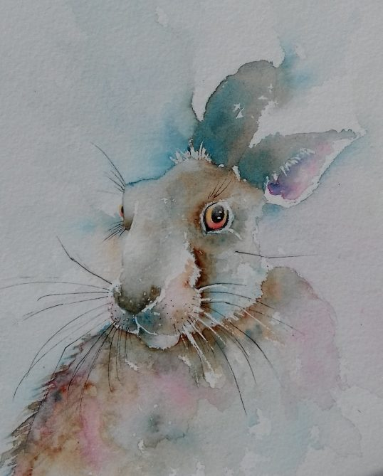 The Pink Hare by Jan McBeth
