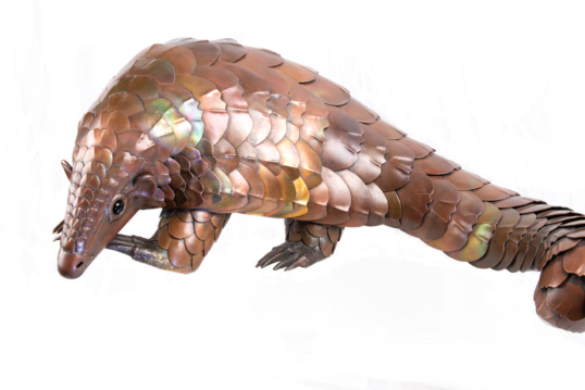 Exotic Pangolin by Sue White Oakes