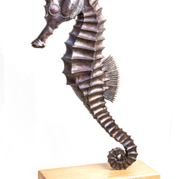 Sea Horse by Sue White Oakes
